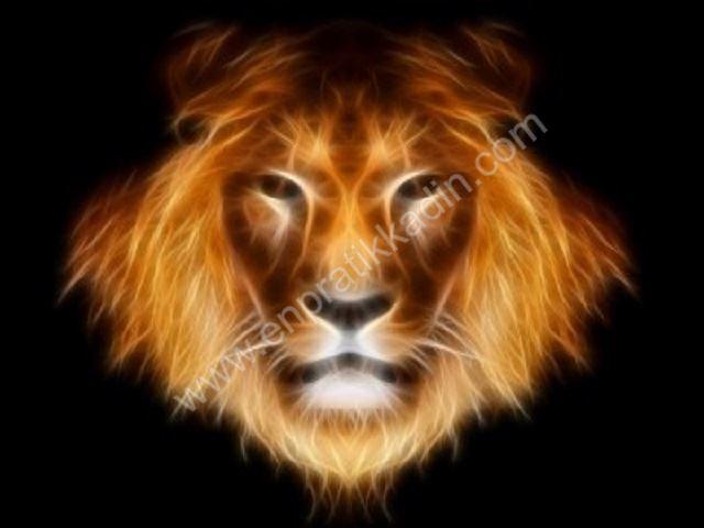 Aslan Burcunda Doğanların İdare Gücü