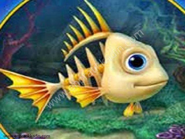 Balık Burcu ve Yıldızları