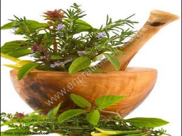 Bitkilerin Doğru Kullanımı