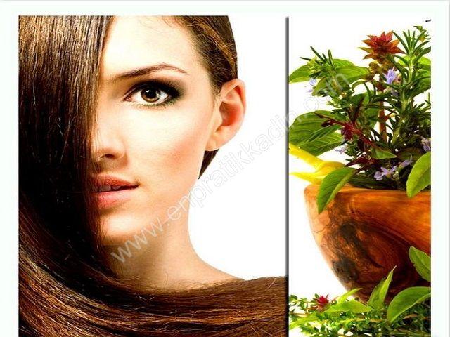 Bitkilerle Saç Bakım Teknikleri