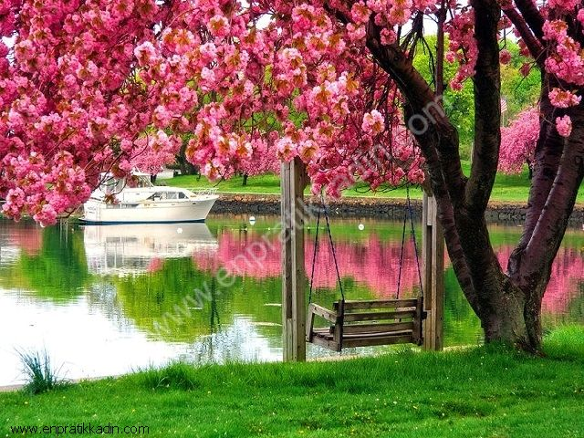 İlkbahar ve İnsanlar
