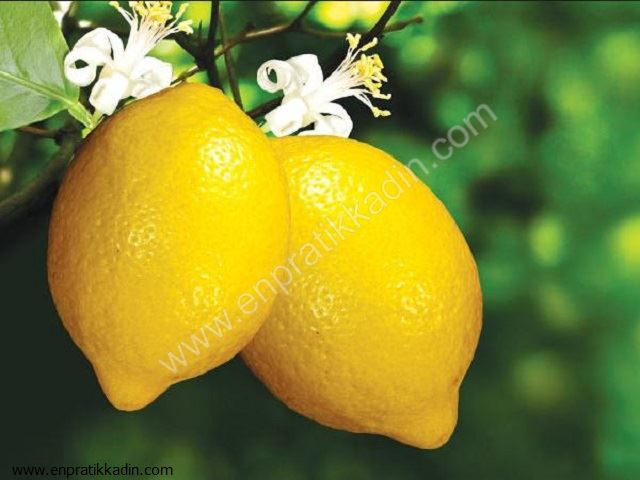 Limon Nasıl ve Nerelerde Kullanılır