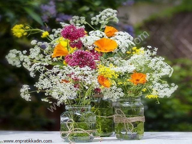 Vazodaki Çiçeklerin Uzun Ömürlü Olması